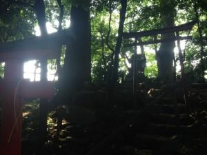 早稲田水神社4