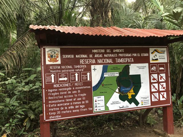 ジャングル5